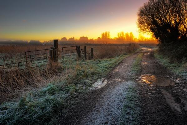 Down the Lane by chris-p
