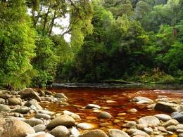 Oparara River 7