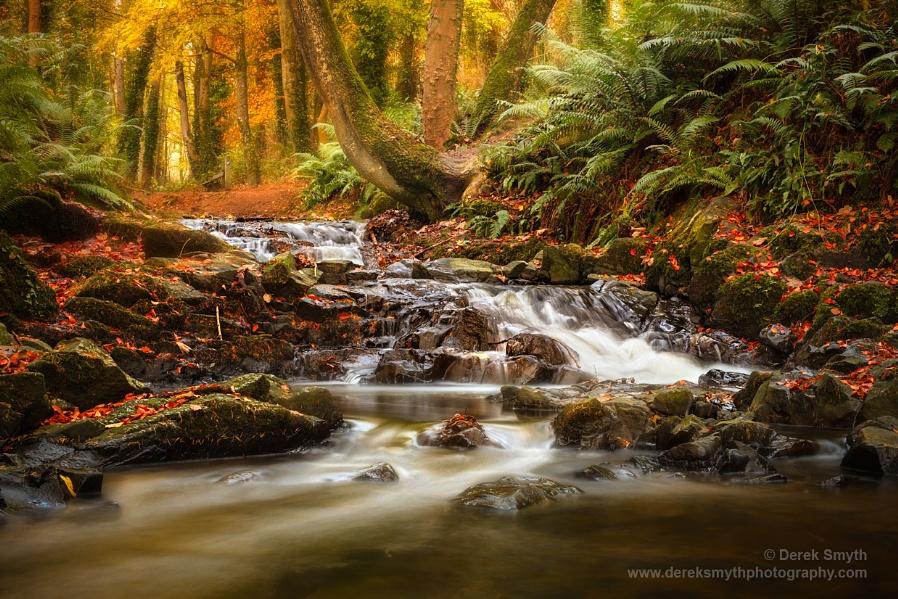 Drumleck River In Autumn