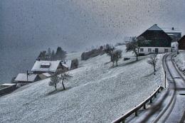 Photo : Silent Sunday Snow.