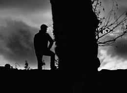 Photo : I TALK TO THE TREES