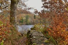 Near Llyn/ Lake Mair,