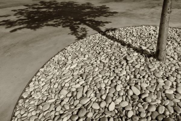 10 o\'clock shadow by leo_nid