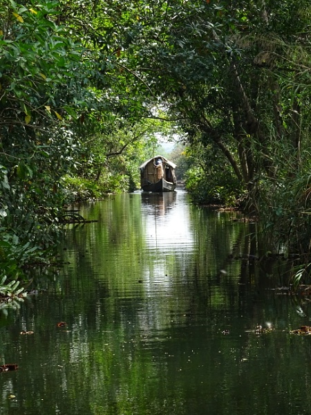 Backwaters of Kerala by Matilda