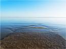 incoming tide. by franken