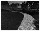Up the garden path by notsuigeneris