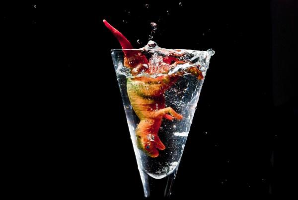 Dinosaur splash by steveo12