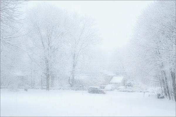 Snow Day by carmenfuchs
