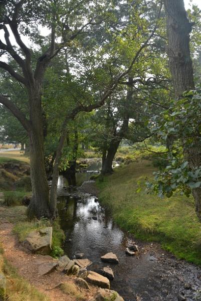 Bradgate Park, Leics by peterthowe
