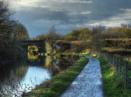 November Walk.... by ianmoorcroft