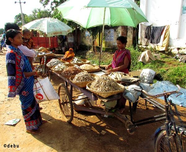 Woman selling dry fish at  Daringbadi, Orissa. by debu