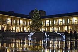 Piece Hall Christmas Tree