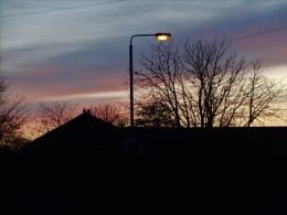 urban sunset