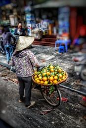 Hà Nội fruit Vendor