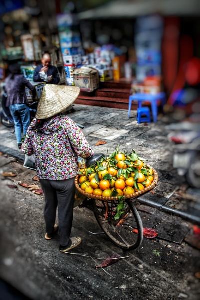 Hà Nội fruit Vendor by Southhill