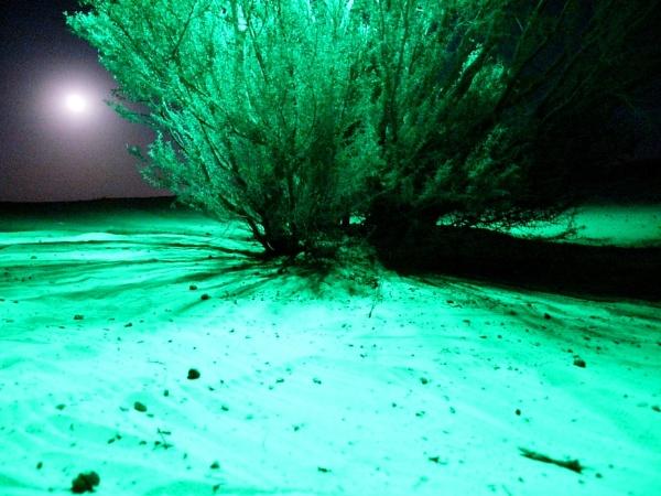 Desert shadows by Savvas511