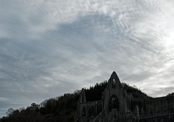 Tintern Abbey by Janetdinah