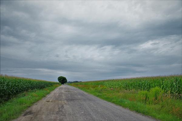 POLAND - Nature\'s Impressions No.34 by PentaxBro