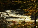 Autumn, River South Esk by MalcolmM