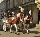 Krakov Holiday by peterthowe