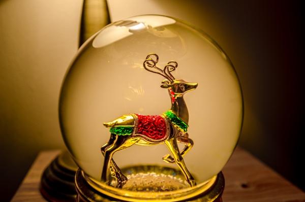 Wee Christmas deer by Craigie10