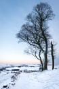 Moat Low in Snow II by jasonrwl
