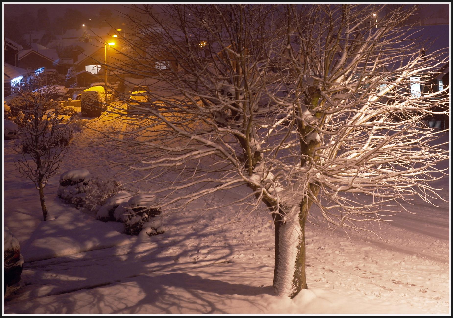 Shropshire Winter