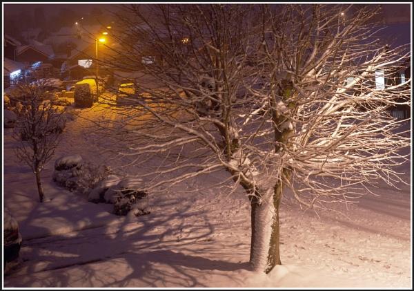 Shropshire Winter by salopian