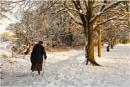 Winter Walk 2 by dark_lord