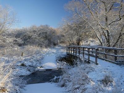 Freezing walk