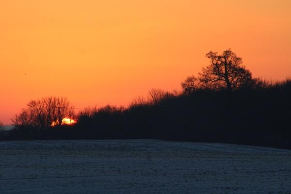 Snowy Sunny Sunrise by freewilluk