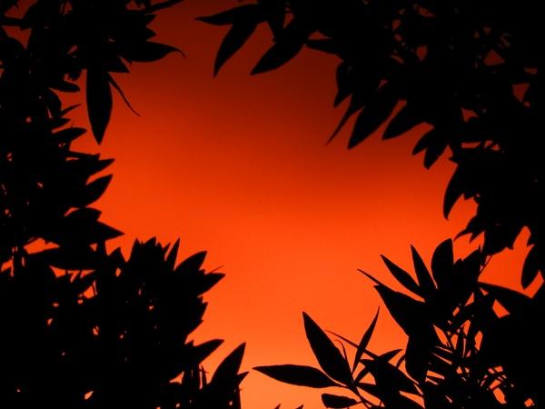 Hidden Sunrise by Savvas511