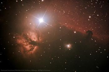 Flame and Horsehead Nebulae
