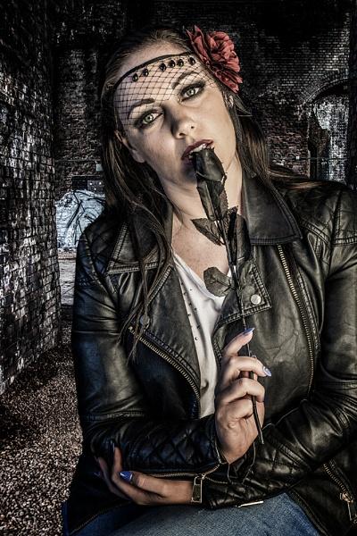 Black Rose by photographerjoe