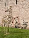 Reindeer shadows. by franken