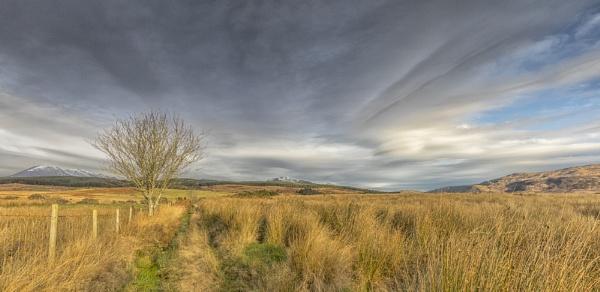 Machrie Moor by pink