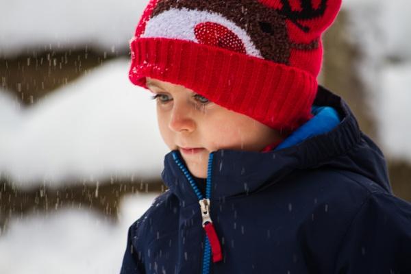 first snowfall by stevegriffiths