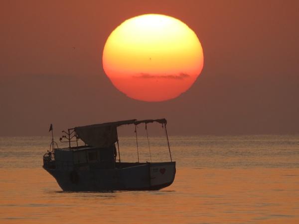 sunrise by bulbulov