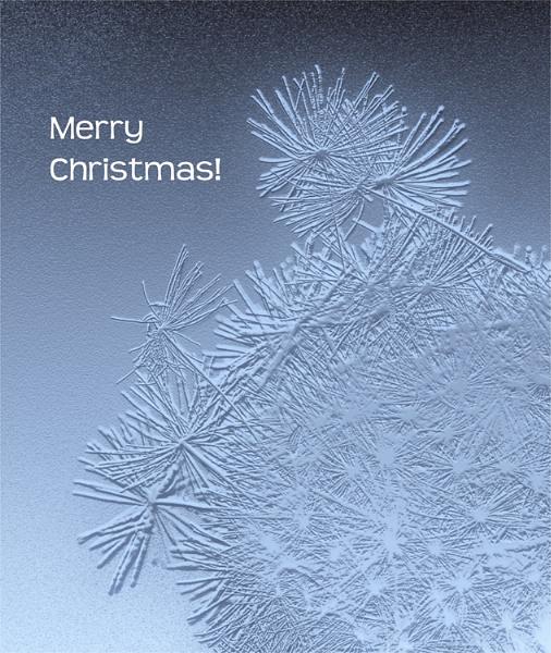 merry christmas by carmenfuchs
