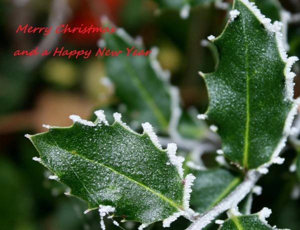 Merry Christmas by IreneClarke