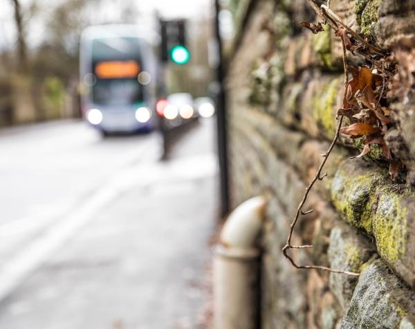 Tatty old stone wall by AM74