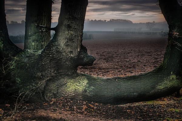 Sleepy Hollow by ColinScott
