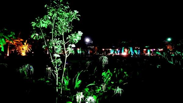 NIGHT-SHOT by abssastry