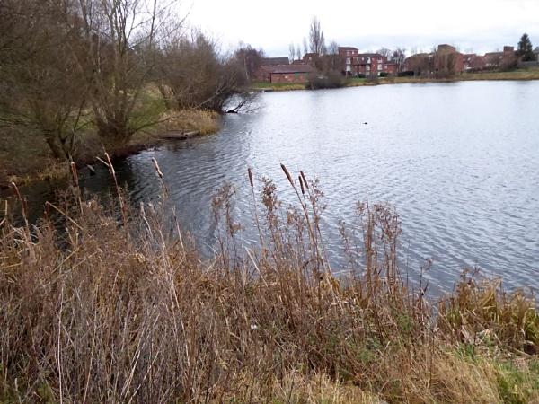 Sandhill Pond, Worksop. by Gypsyman