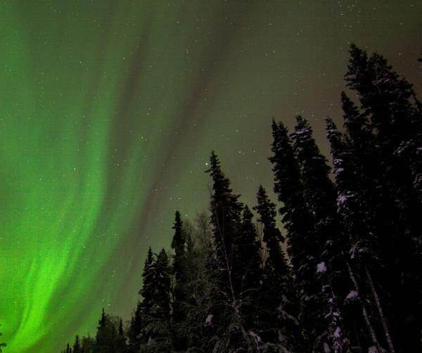 Night Lights by Rebeak