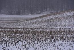 A farm in winter