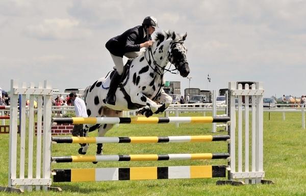 Jump! by robertphillips