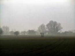mist rolling in