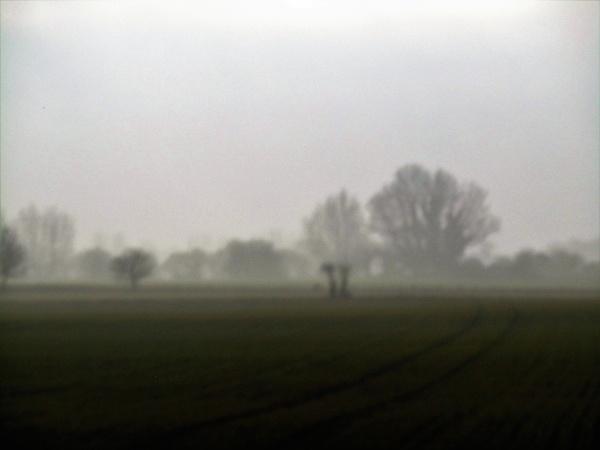 mist rolling in by jenny007
