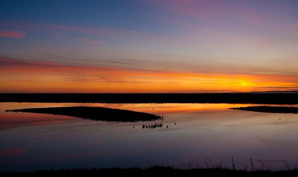 Sunset at Leighton Moss by DavidCookson